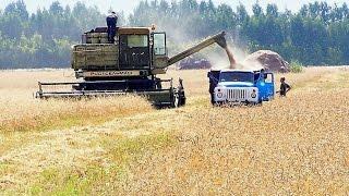 getlinkyoutube.com-Farming Simulator 2015 пак русской техники