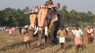 getlinkyoutube.com-Puthupally  Keshavan At Chiravarambath Kavu Pooram 2015