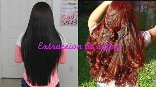 getlinkyoutube.com-Extracción de Color en cabello negro. Paso a paso...