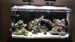 getlinkyoutube.com-Innovative Marine nuvo 16