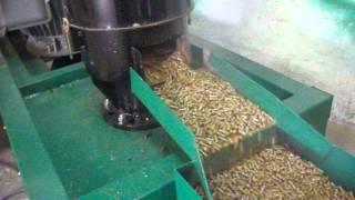 getlinkyoutube.com-Pelleciarka PB-18,5 - produkcja pelletu ze słomy pszennej
