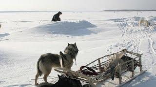 getlinkyoutube.com-Счастливые люди | Енисей | Зима (серия 4) | Дмитрий Васюков