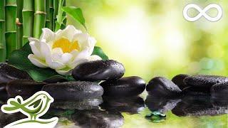 Relaxing Piano Music: Soft Sleep Music, Water Sounds, Meditation Music, Relaxing Music ★102