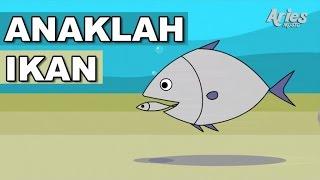 getlinkyoutube.com-Lagu Kanak-Kanak Alif & Mimi - Anaklah Ikan (Animasi 2D)