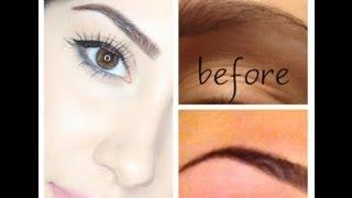 getlinkyoutube.com-How I Dye (tint) & Groom My Eyebrows!!! ♥ SUPER Requested!!!!