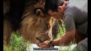 getlinkyoutube.com-Kevin Richardson - Dangerous Companions