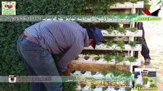 getlinkyoutube.com-رحلة في مزرعة سمو الشيخ سلطان بن خالد بن محمد القاسمي