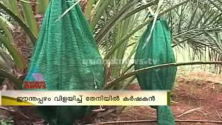 getlinkyoutube.com-Dates business growth in Tamilnadu Theni : Chuttuvattom News