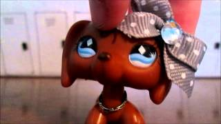 How to make Littlest pet shop clothes!!