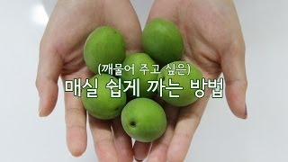getlinkyoutube.com-매실 쉽게 까는 방법 (How To Peel a Japanese Apricot Easily)
