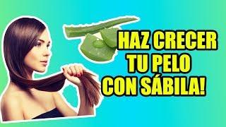 getlinkyoutube.com-Tratamiento De Sábila Para El Cabello | Yasmany