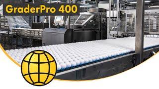 getlinkyoutube.com-GraderPro - Egg Grading and Packing Machine