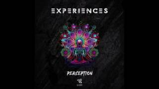 Perception - Experiences