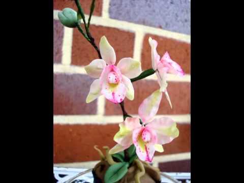 Orchidee - Muffin/ Motivtorte. Fondant / Blütenpaste / Cake