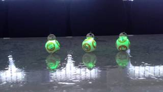 getlinkyoutube.com-Dancing BB-8 !!