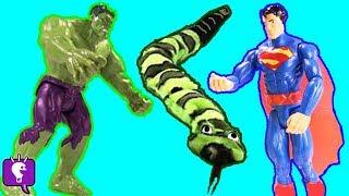 getlinkyoutube.com-HUGE Snake Battle HULK SUPERMAN! Snake Ate Surprise Toys by HobbyKidsTV