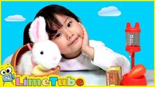 getlinkyoutube.com-라임이의 깡총깡총 뛰는 아기토끼 키우기 애완동물 기르기 장난감 놀이 Lime & Toys 라임튜브