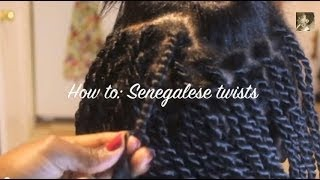 getlinkyoutube.com-Twist from the Root: Senegalese twists on Relaxed hair