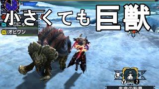 getlinkyoutube.com-【MHX実況】小さくても巨獣 極小ガムート【モンハンクロス】