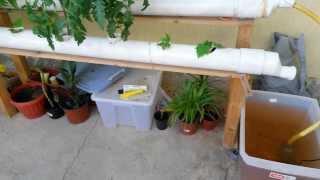getlinkyoutube.com-شرح نظام الزراعة المائية hydroponic system