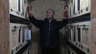 getlinkyoutube.com-Миниферма- шед для содержания кроликов (клетки для кроликов)