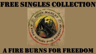Ziggy marley - A fire burns for freedom