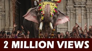 getlinkyoutube.com-Thechikottukavu Ramachandran Open Thekke Gopura Nada at Thrissur Pooram 2016