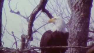 getlinkyoutube.com-7 Wonders of Jackson Co. Al. Pt1, Judge J. Graham 1-25-15