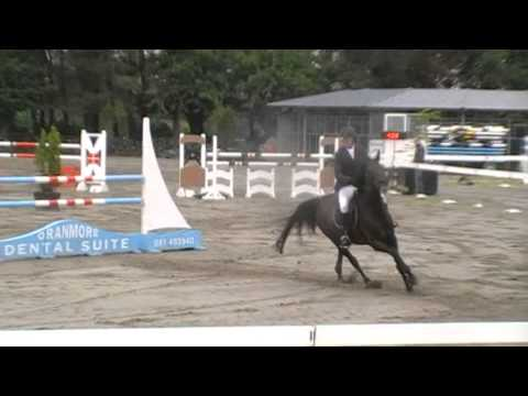 Almost Persuaded - Galway Rds 7/8yo Qualifier