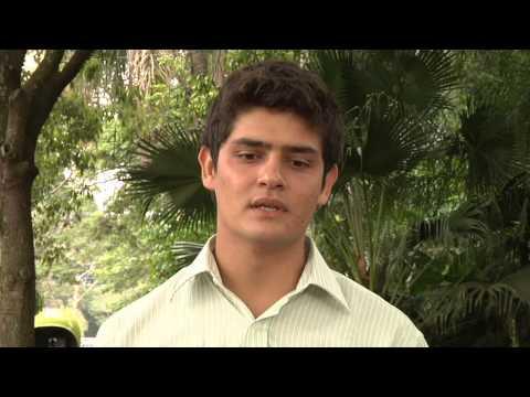 Cursos da Esalq/USP Piracicaba - Engenharia Florestal