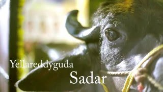 getlinkyoutube.com-Santosh Yadav,Anand Yadav Ameerpet Yellareddyguda Sadar Sammelan 2015