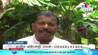 getlinkyoutube.com-Sanjiv Bahirshetty's zero budget banana farming success story.