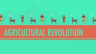 The Agricultural Revolution: Crash Course World History #1