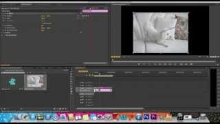 getlinkyoutube.com-How to Move Photos/Videos Around in Adobe Premiere Pro