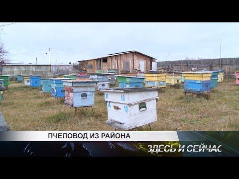 Пчеловод из района