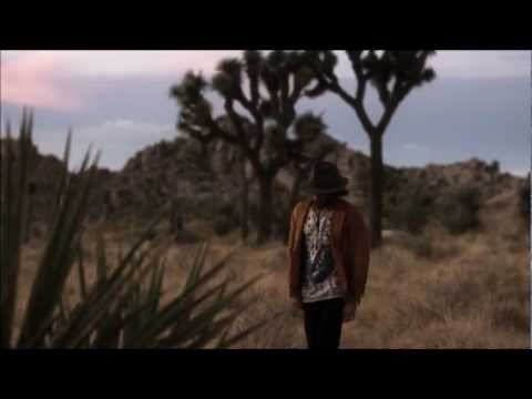 Angus Stone - Bird On The Buffalo Official Video