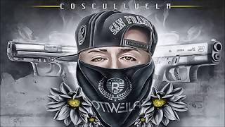 getlinkyoutube.com-Cosculluela - La Nueve Y La Fory [Audio Oficial]