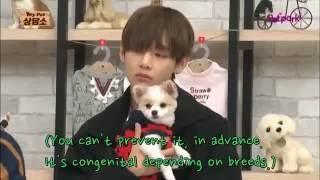 getlinkyoutube.com-EngSub BTS fans wants to be a dog ;even Vs Grandma(funny)