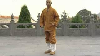 getlinkyoutube.com-少林Shaolin Basic Kicks and footwork