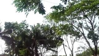 getlinkyoutube.com-my village home kulaura