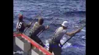 getlinkyoutube.com-Tuna fishing 85 Port Lincoln 150 lbs plus fish biggest seen in my years fishing