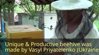 getlinkyoutube.com-Уникальный идеальный Супер-Улей Василия Приятеленко (Ukraine) Beekeeper in Ukraine
