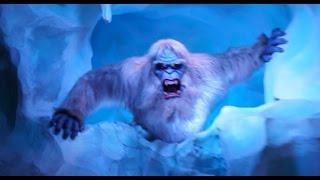 getlinkyoutube.com-POV: New Abominable Snowman on Matterhorn Bobsleds