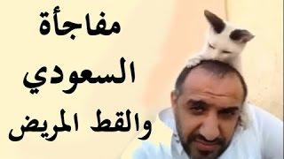 getlinkyoutube.com-شاهد مواطن سعودي ينقذ قطة من الموت ويعالجها وبعد فترة حدثت مفاجأة عجيبة جدا