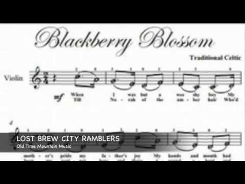 Lost Brew City Ramblers: Old Time Mountain Music