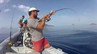 vertical jigging : cernia bruna ad inchiku
