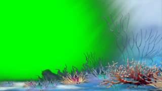 under water world - green screen effect