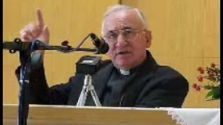 (Teil 1. C) Prof. Tomislav Ivancic -Vortrag über \