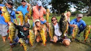 Miami Florida Peacock Bass Tournament DarcizzleOffshore MonsterMike Thadeus Mikey Jim Scott
