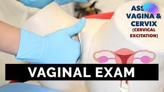 getlinkyoutube.com-Vaginal Examination (PV) - OSCE Guide